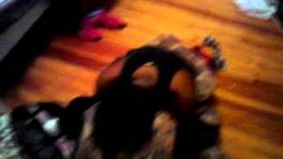 Females get caught f****** with strap on