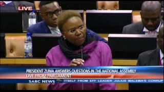 Ndlozi calls Minister Zulu