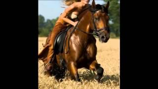 Chicas Atractivas y Caballos - Sexy Girls and Horses