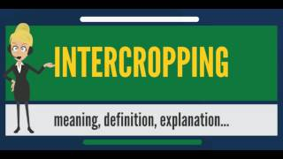 What is INTERCROPPING? What does INTERCROPPING mean? INTERCROPPING meaning & explanation