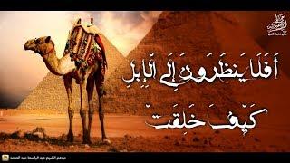 « أَفَلَا يَنظُرُونَ إِلَى الْإِبِلِ كَيْفَ خُلِقَتْ » عبدالباسط عبدالصمد   رواية خلف عن حمزة