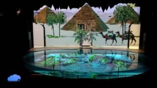 Suma Aquarium Raylight4D in dolphin pool