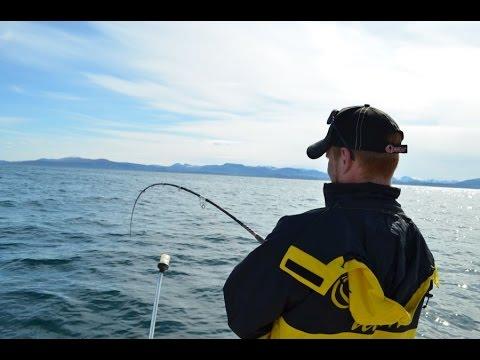 рыбалка в норвегии ютуб