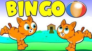 Lagu Kanak Kanak Melayu Malaysia - Pak Atan Ada Kucing | BINGO Nursery Rhyme in Malay