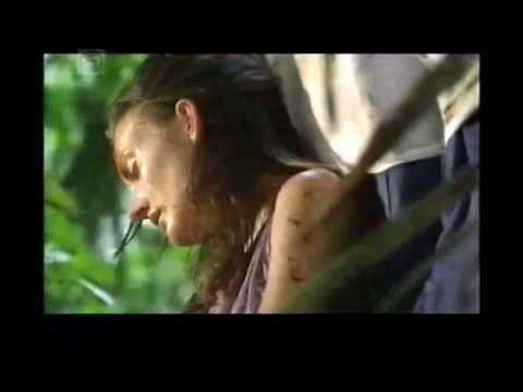Survival in the Amazon Rainforest