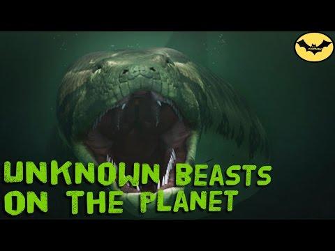 Xxx Mp4 World Alert 5 Real Monsters Inhabit The Earth 3gp Sex