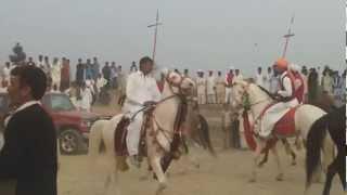 Horse Race In Pakistan New Video 2012.mp4
