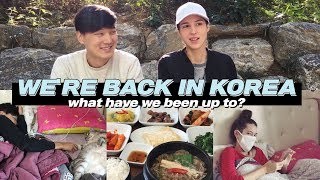 We're Back in Korea | What Have We Been Up To? (자막)한국에 돌아왔어요!