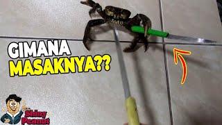 Ketika Kepiting Menolak Untuk Dimasak, Inilah yang Terjadi?!