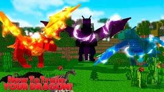 HOW TO TRAIN YOUR DRAGON - THE DRAGON FUNERAL!