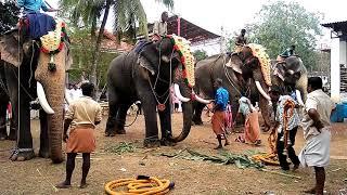 Chulliparamban - Chulliparambil Vishnu Shanker Mahout Santhosh Attacker