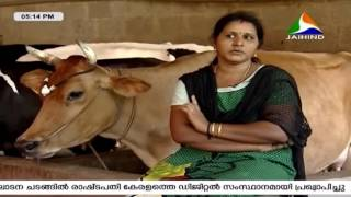Success Story of Shibu, Bindu and their Divya Dairy Farm | Mannum Manushyanum | 27th February 2016