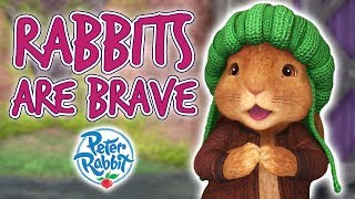 Peter Rabbit - Rabbits are Brave   Cartoons for Kids