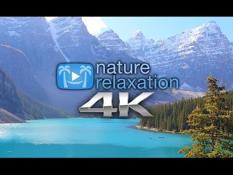 Xxx Mp4 Peaceful Relaxation 4K Nature Relaxation™ Sizzler Free Download 3gp Sex