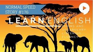 Deep English - Elephant Whisperer (normal speed)