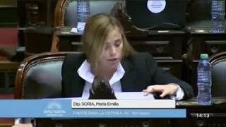 María Emilia Soria votó a favor del desafuero a Julio De Vido - ANR
