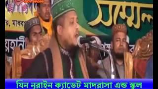 Funny Bangla waz. আবেগে হুজুর ফাল পাইরা ফিট পইরা গেছে। Wali Ullah Asheki