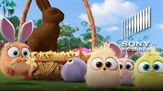 THE ANGRY BIRDS MOVIE - Hatchling Easter