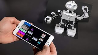 TOP - 5 Futuristic Personal Robots For Everyone