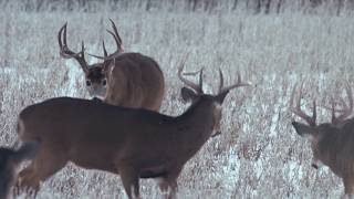Heartland Bowhunter - NEW Season Coming Soon - Outdoor Channel