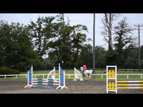 Xxx Mp4 Louisa And Grady At Fox Chase Farm Jumpers 2 39 6 Quot 3gp Sex