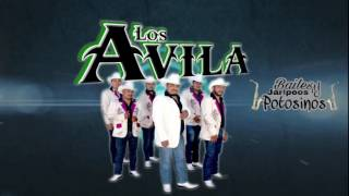 Los Avila  - Huapangos a puro Saxofón de oro 2017