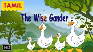 Panchatantra Stories - The Wise Gander - Tamil Moral Stories for Children - Animated Cartoons/Kids