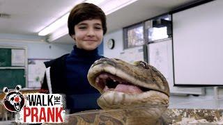 Pet Snake | Walk the Prank | Disney XD