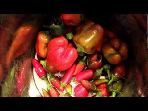 Xxx Mp4 Making Homemade Tabasco Hot Sauce 3gp Sex
