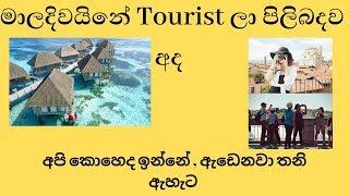 Tourism Statistics in Maldives 2019 updated