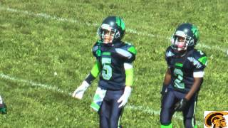 Detroit PAL Football: The Best Of The B-Team Level (2014)