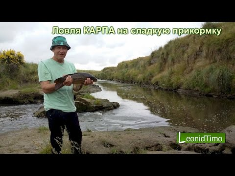 рыбалка с леонидом тимо