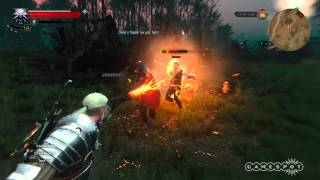 The Witcher 3  Wild Hunt Magical Signs Guide  Spot 5