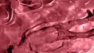 Diaclast - Sea Slaughter (Full EP video art)