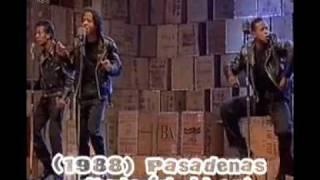 Pasadenas - Tribute (right on) (1988).flv