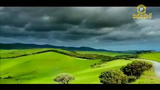 నిన్నే నిన్నే నే కొలుతున్నయా - Telugu Christian song By Pastor Rajababu