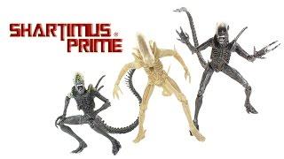 NECA Toys Alien vs Predator Grid Alien, Warrior, and '79 Concept Prototype Series 7 Movie Action Fig