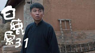 白鹿原 | White Deer 31【DVD版】(張嘉譯、秦海璐、何冰等主演)