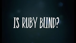 Is Ruby blind? We answer your question!