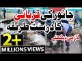 Qurbani Ka Amli Tareeqa | Bakra Eid Day | Practical Way of Qurbani | 2017