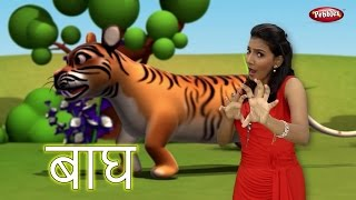 Hindi Rhymes For Children With Actions | Tiger Song in Hindi Kids | हिंदी गाने | Hindi Baby Rhymes