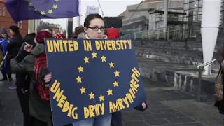 Brexit Protest Cardiff By Rhys Skinner