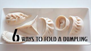 6 ways to fold a dumpling