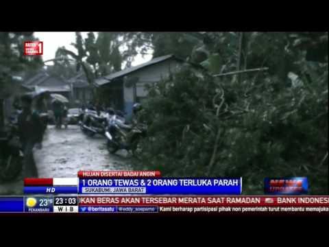 Anak 13 Tahun di Sukabumi Tewas Tertimpa Pohon Tumbang