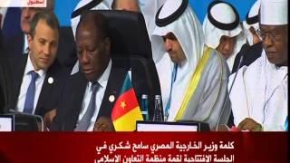 القمة الإسلامية في تركيا: كلمة وزير الخارجية المصري سامح شكري