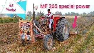 MF 265 special power 85 Model tractor with cultivator Massey Ferguson Millat tractors in Pakistan