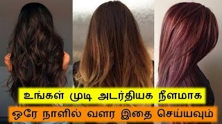 Fast Hair Growth tips in tamil - Hair Mask for Strong long Shiny & Glossy hair || Tamil Beauty Tips