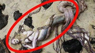 তবে কি এবার সত্যিই পাওয়া গেলো মৎসকন্যা !!! | Real Mermaid Found | Latest Bangla News