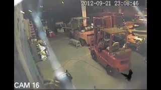 Video Monitoring Service - Thief vs K9 unit!