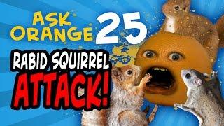 Annoying Orange - Ask Orange #25: Rabid Squirrel Attack!